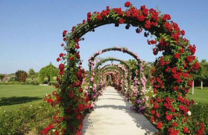 2Finca venues spain www.marbella-wedding.com